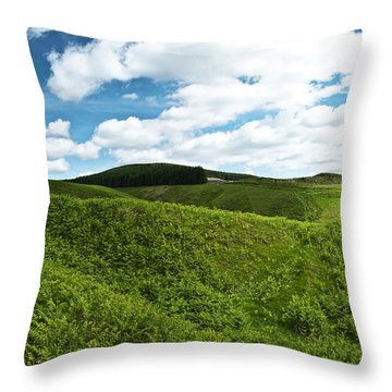 Throw Pillow featuring the photograph Vista by Ross G Strachan