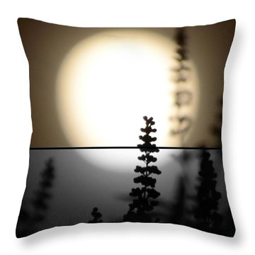Vitex Moon Throw Pillow