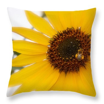 Throw Pillow featuring the photograph Vivid Sunflower With Bee Fine Art Nature Photography  by Jerry Cowart