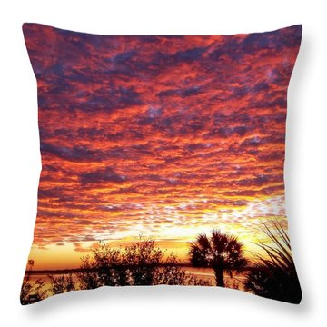 Voice Of God Throw Pillow by Karen Wiles