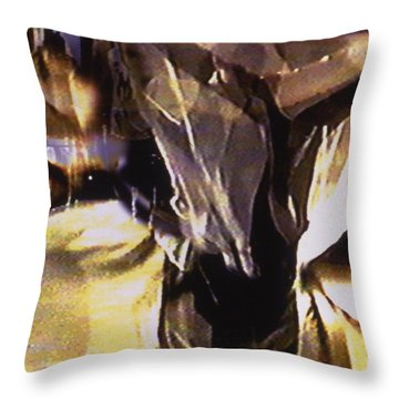 Voiles Throw Pillow