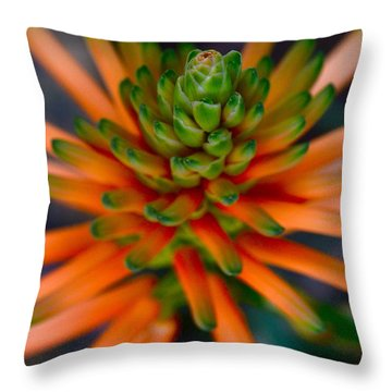 Volcano Throw Pillow by Tim Good