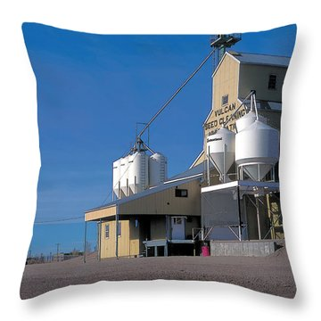 Vulcan 2 Throw Pillow by Terry Reynoldson