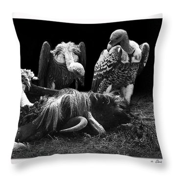 Vulture Throw Pillow by Christine Sponchia
