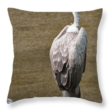 Vulture On Guard Throw Pillow