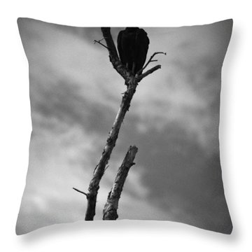 Throw Pillow featuring the photograph Vulture Silhouette by Bradley R Youngberg