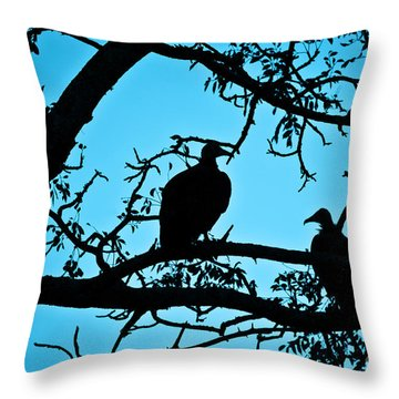 Vultures Throw Pillow by Delphimages Photo Creations