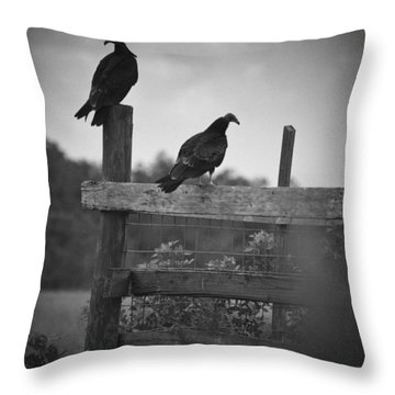 Throw Pillow featuring the photograph Vultures On Fence by Bradley R Youngberg