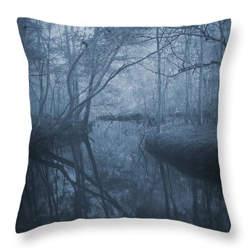 Waccasassa River Throw Pillow by Phil Penne