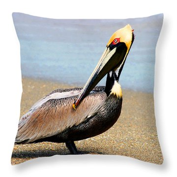 Wadding Pelican  Throw Pillow