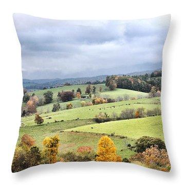 Waddletown Road Throw Pillow