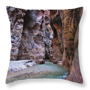 Wadi Mujib Throw Pillow by David Gleeson