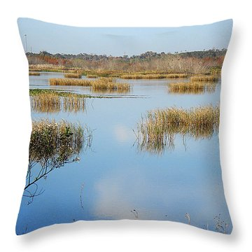 Throw Pillow featuring the photograph Wading Bird Way 007 by Chris Mercer