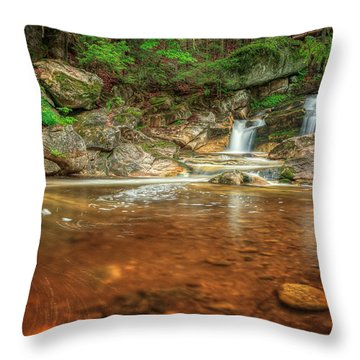 Wading Pool Throw Pillow by Bill Wakeley