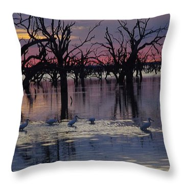 Wading The Shallows Throw Pillow by Blair Stuart