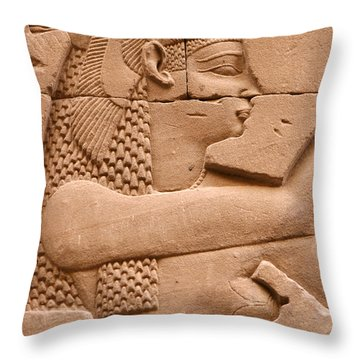 Wadjet Throw Pillow by Stephen & Donna O'Meara