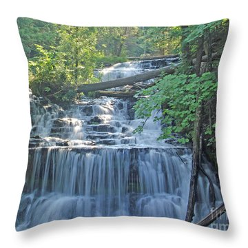 Wagner Falls  Soft Water Effect Throw Pillow
