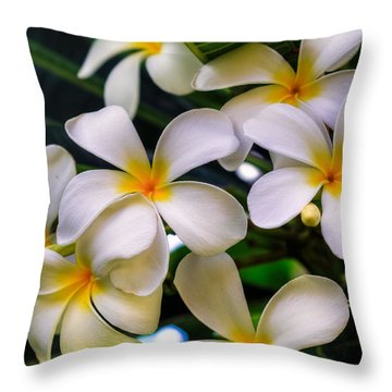 Wailea Plumerias Throw Pillow
