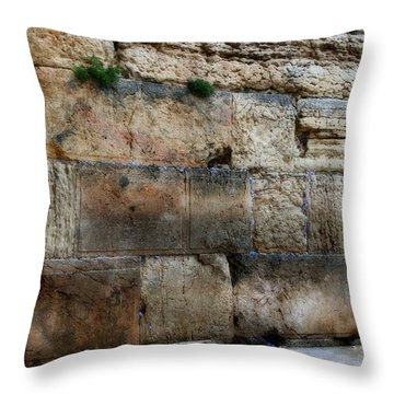 Throw Pillow featuring the photograph Wailing Wall In Israel by Doc Braham
