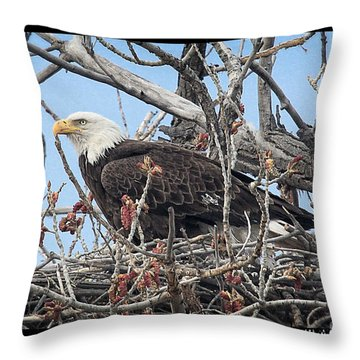 Waiting Throw Pillow by Bob Hislop