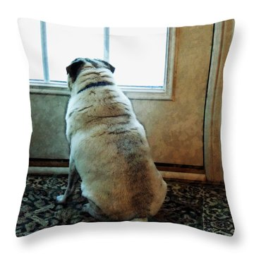 Waiting... Throw Pillow by Michael Stowers