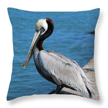 Waiting For A Fish  Throw Pillow by Christy Pooschke