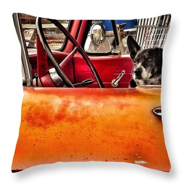 Waiting For Criminals Throw Pillow