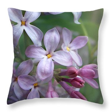 Waiting For Lilacs Throw Pillow