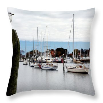 Waiting For Sandy Throw Pillow by Lon Casler Bixby