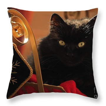 Waiting For Santa To Arrive Throw Pillow by Inspired Nature Photography Fine Art Photography