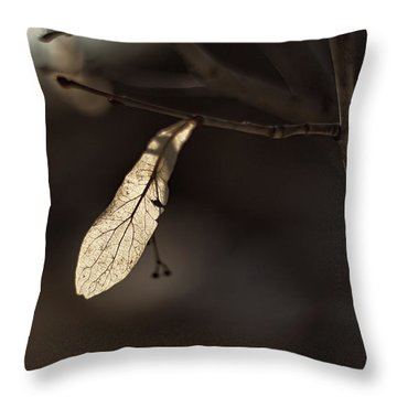 Waiting For Spring Throw Pillow by Jakub Sisak