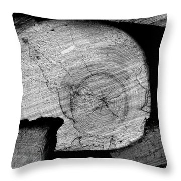 Throw Pillow featuring the photograph Waiting For The Fireplace 003 by Dorin Adrian Berbier