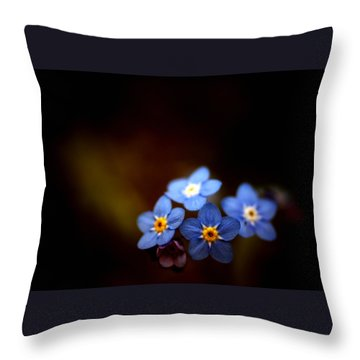 Waiting For The Light Throw Pillow by Rachel Mirror