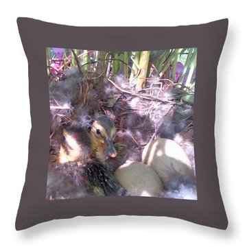 Waiting For The Others Throw Pillow by Barbara McDevitt