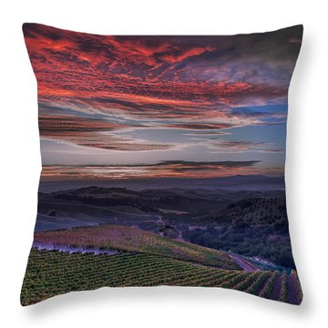 Waiting For The Sun In Adelaida Throw Pillow