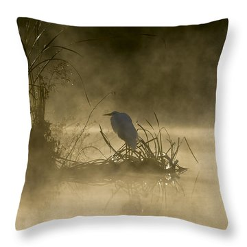 Throw Pillow featuring the photograph Waiting For The Sun by Steven Sparks