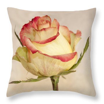 Throw Pillow featuring the photograph Waiting For The Unfurling by Sandra Foster