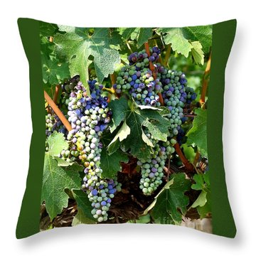 Waiting For Wine Throw Pillow by Carol Groenen