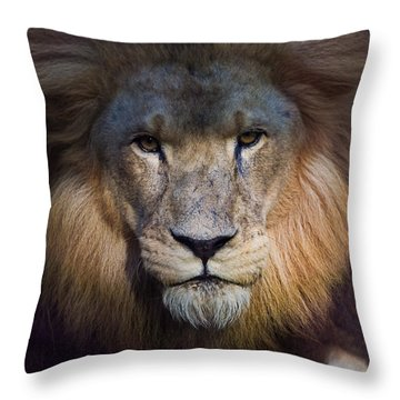 Waiting In The Shadows Throw Pillow by Tim Stanley