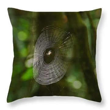 Waiting On The Web Throw Pillow