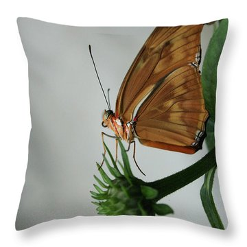 Butterfly Waiting On The Wind  Throw Pillow