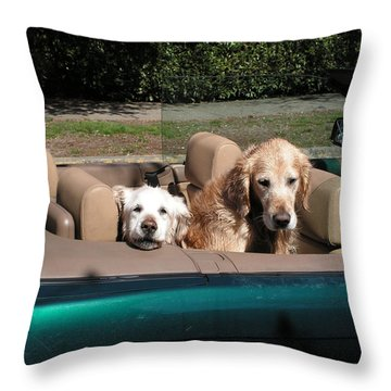 Waiting Patiently Throw Pillow by Cheryl Hoyle