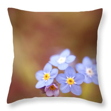 Waiting Throw Pillow by Rachel Mirror