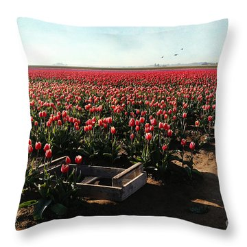 Throw Pillow featuring the photograph Waiting To Be Picked by Sylvia Cook