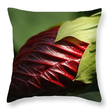 Throw Pillow featuring the photograph Waiting To Exhale by Ramona Whiteaker