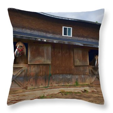 Waiting To Go Out In Field Throw Pillow by Dan Friend