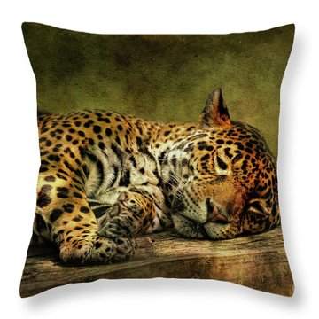 Throw Pillow featuring the photograph Wake Up Sleepyhead by Lois Bryan