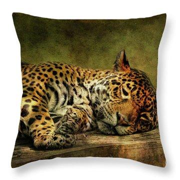 Wake Up Sleepyhead Throw Pillow