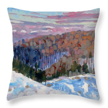 Waking Up Throw Pillow by Phil Chadwick