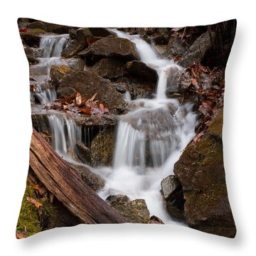 Walden Creek Cascade Throw Pillow